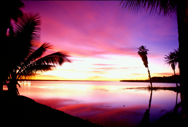 Sunrise Estuary Mexico.jpg