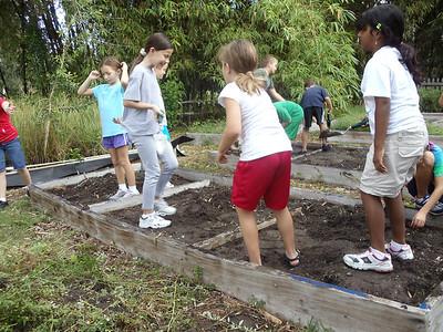3rd grade Gardening October 2011