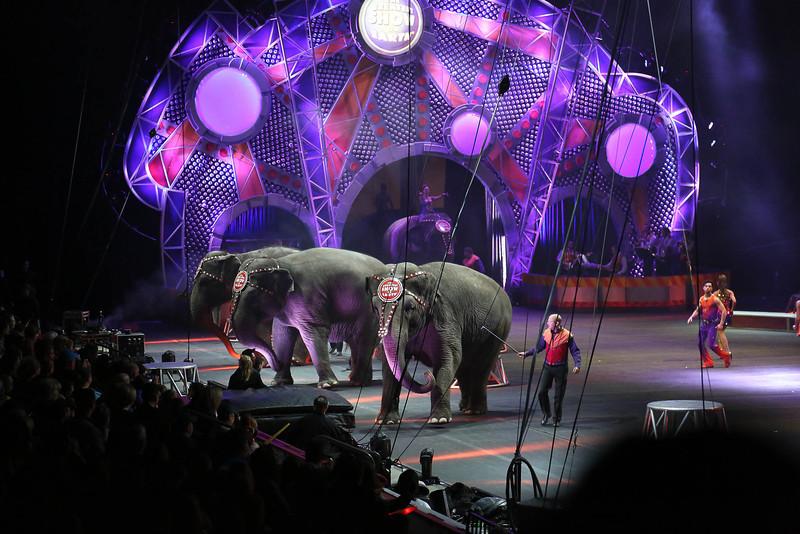 Circus_24.jpg