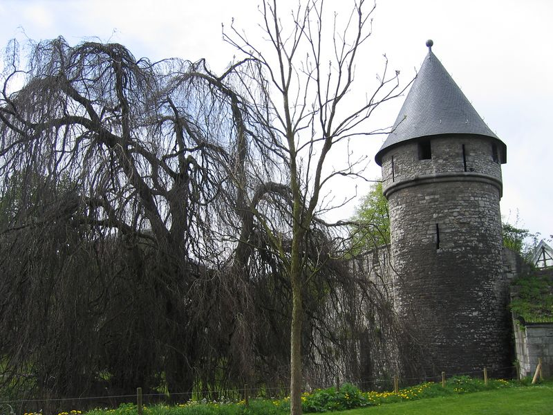 castle_wall.jpg