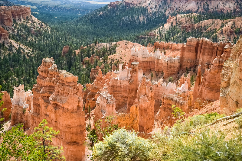 2019 Grand Canyon-106.jpg