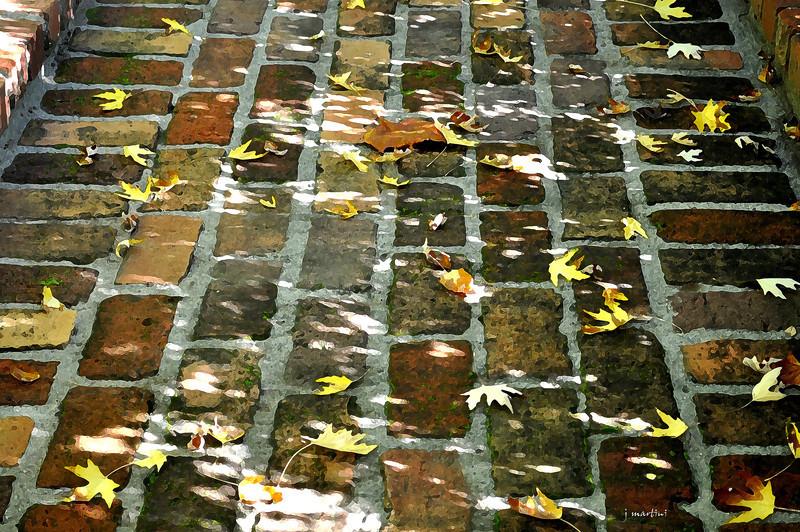 brick walk 1-7-2012.jpg