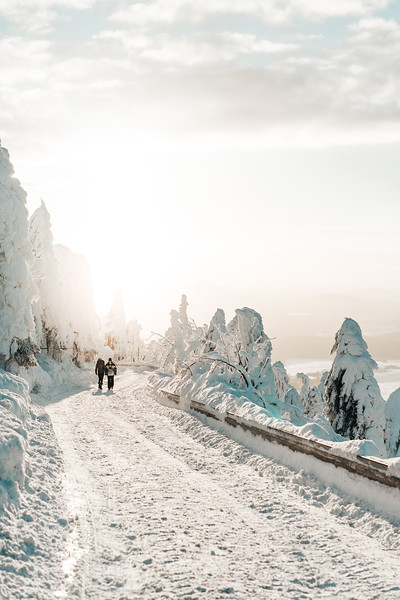 two-persons-walking-on-snow-covered-road-picjumbo-com.jpg