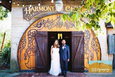 Melissa+Richard ~ Harmony Wedding