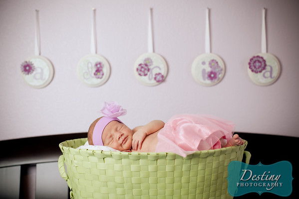 Adria's Newborn Pix