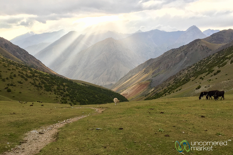 HeightsofAlay_Trek_Kyrgyzstan_Sunset_Light.jpg