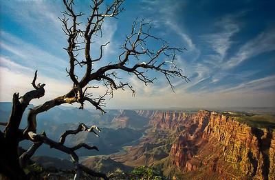 Yosemite & Arizona