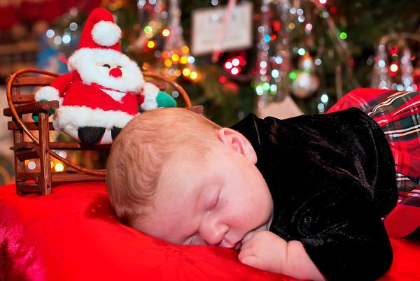 Bridget Christmas Photos