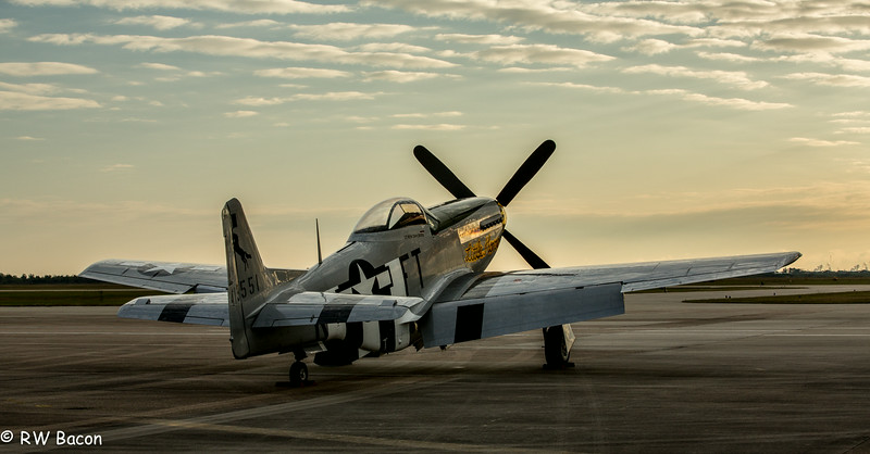 P51 Mustang - Early Morning.jpg