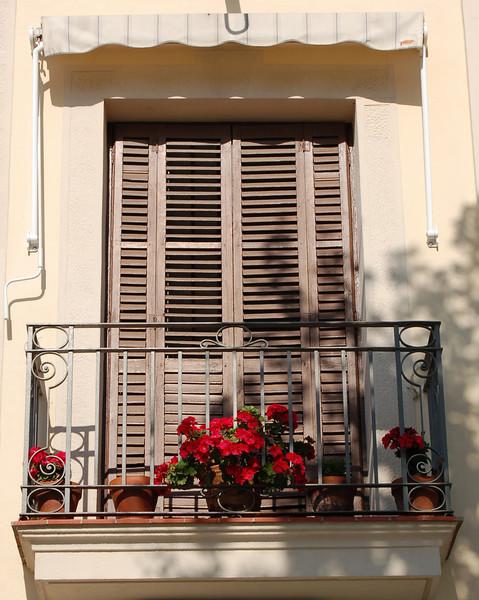 window11.jpg