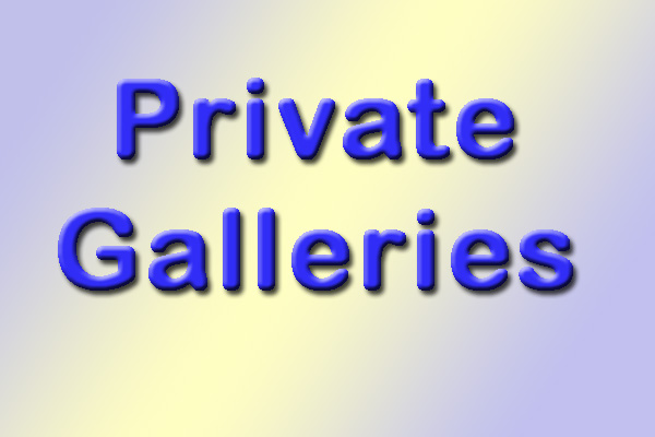 Private (Client) Galleries