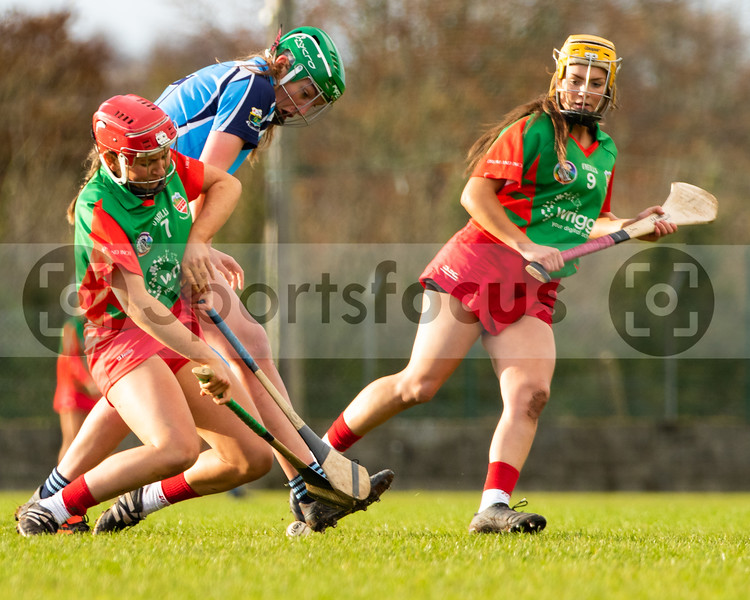 """9th November 2019 """"AIB"""" Munster Senior Camogie Club Championship Final - Drom & Inch (Tipperary) 0-8(8) Scariff-Ogonnnelloe (Clare) 1-7(10) at Cappamore, Co Limerick."""