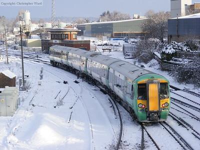 Snow - January 2010