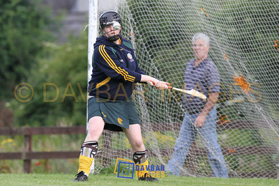 Donard/Glen Camogie 2011