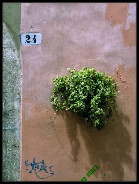 2010-05-Spoleto-014.jpg
