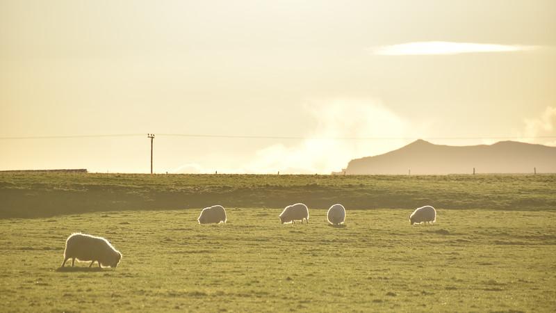 Iceland_2015_10_09_09_55_14.jpg