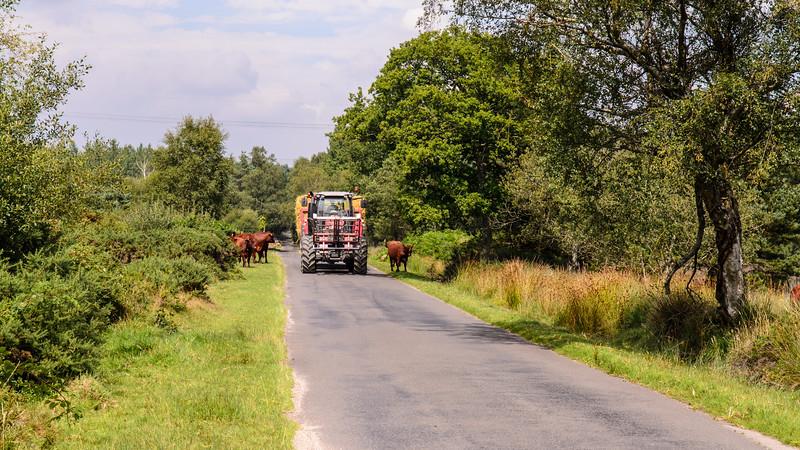 Tractor of hay bales in Dorset