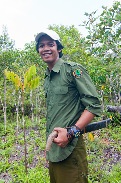 Borneo-Jungle-6764.jpg