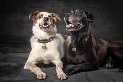 Wrigley & Kona