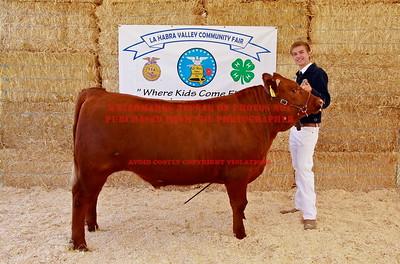 2012 LHVCF Auction