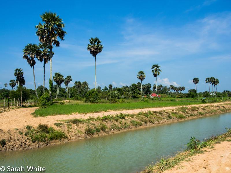 131103_Kampot_562.jpg