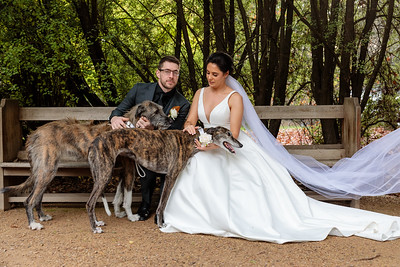 Emily and Ryan - Wedding