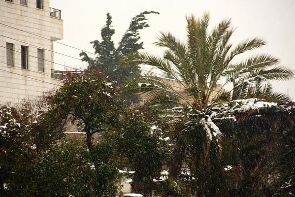 Amman 1: Lwebdeh in Winter