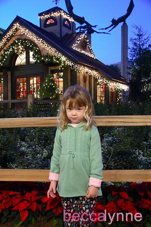 november 21. 2008 christmas tree lighting at fashion island