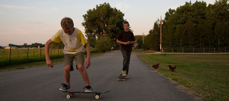 Isaac and Brendan (on their skateboards, left) and a couple chickens (right).