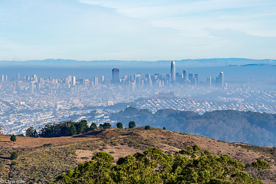 San Bruno Mtn SP, 2021