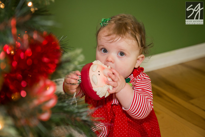 Christmas_card_photos_CharlestonSC (3).jpg