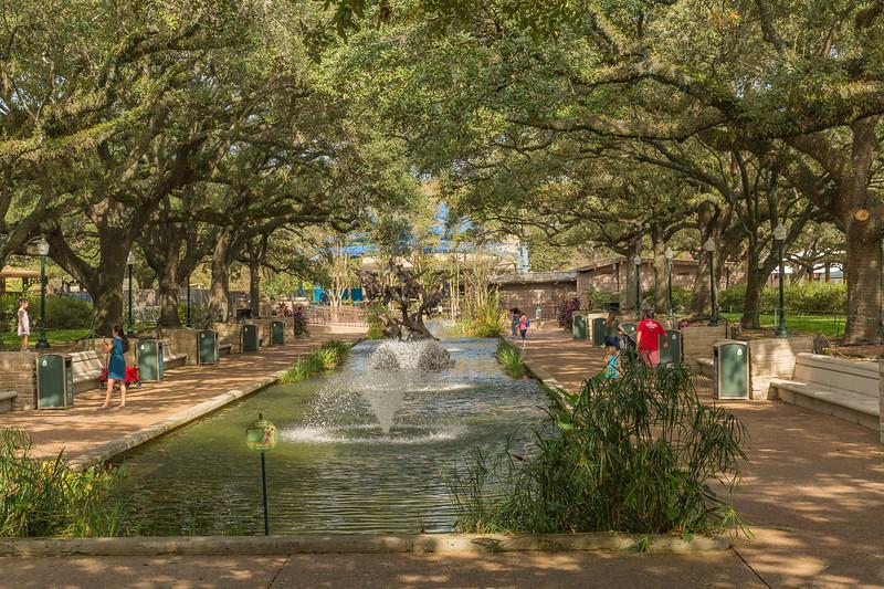 Houston Zoo 11-2020