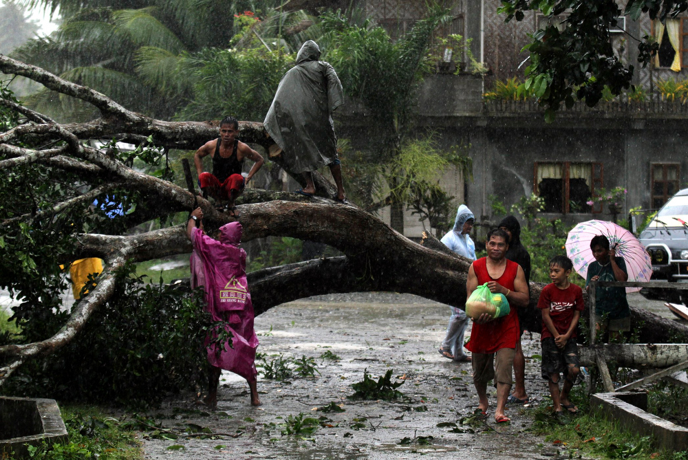 . Residents saw an uprooted tree to clear the road after Typhoon Bopha hit Tagum City, southern Philippines December 4, 2012. Typhoon Bopha made landfall in southern Philippines early Tuesday, bringing heavy rains and strong winds, forcing 41,600 people living in coastal areas to flee their homes.  REUTERS/Stringer