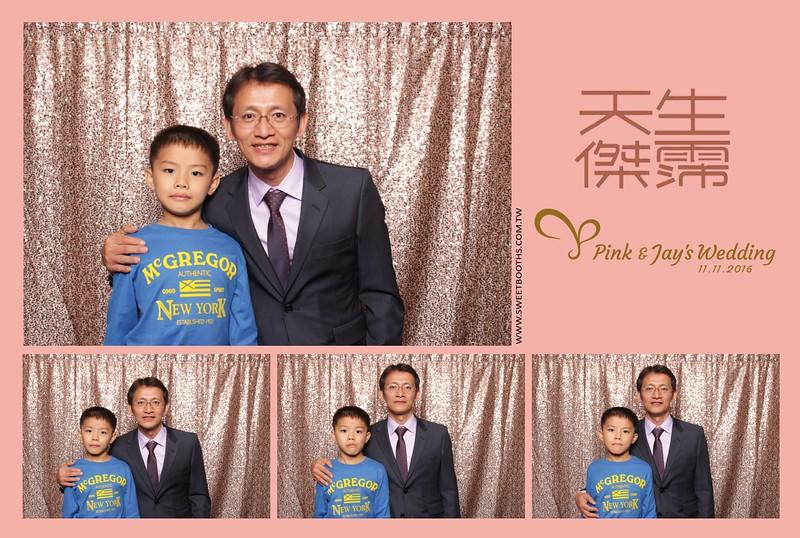 Pink.Jay (123).jpg