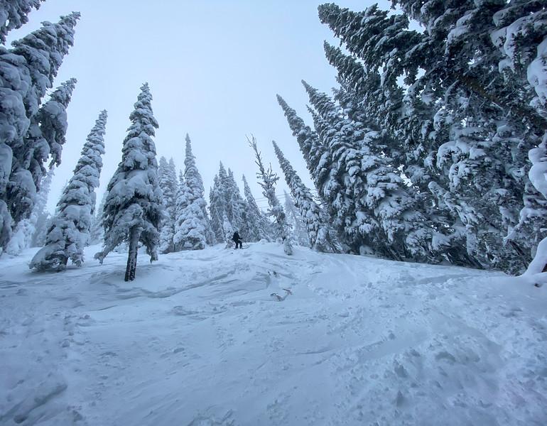 Melissa skiing the steeps