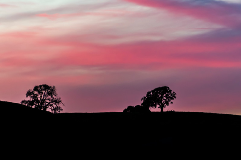 Sundown Oaks.jpg