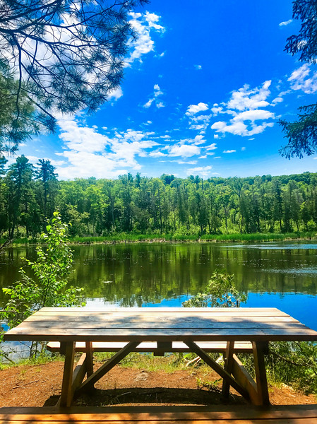 ottawa valley maple adventures shaw woods-2.jpg