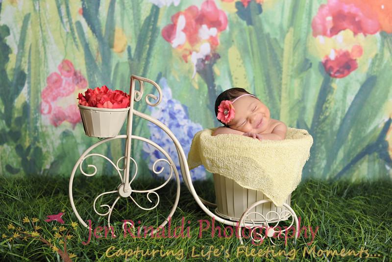 Ariela [Newborn] 12 Days