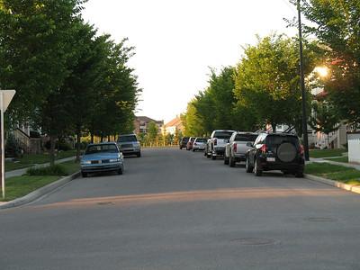 Yard 2008