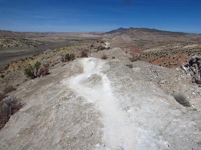 White Ridge Trails-Dragons Back Hike  3-16-20