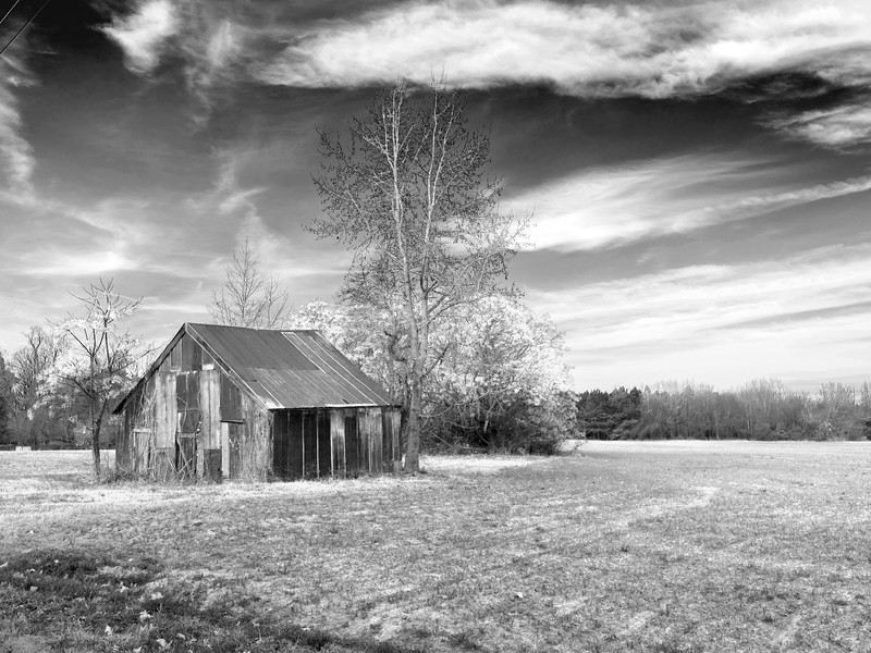 04 Bw 2013 Barn NAsh Co (1 of 1).jpg