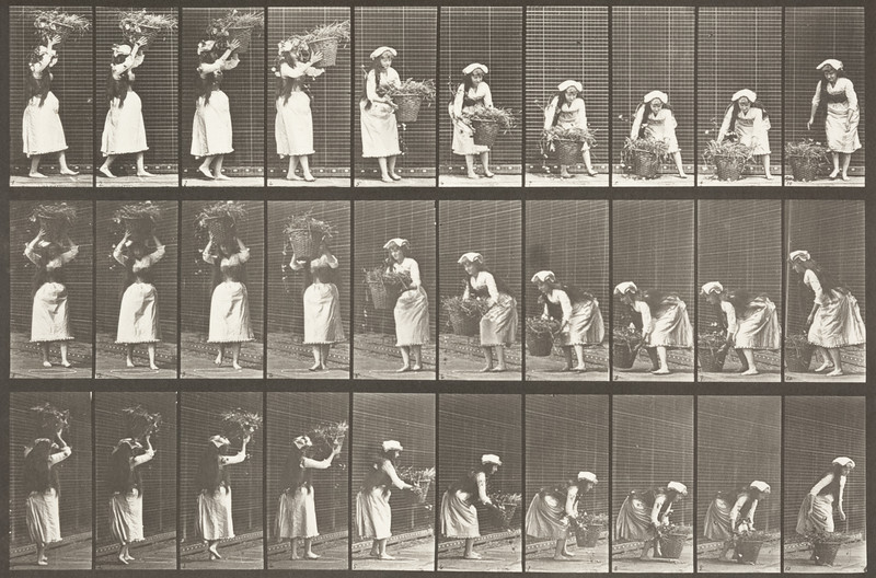 Draped woman taking a 12-lb basket from head and placing it on ground (Animal Locomotion, 1887, plate 454)