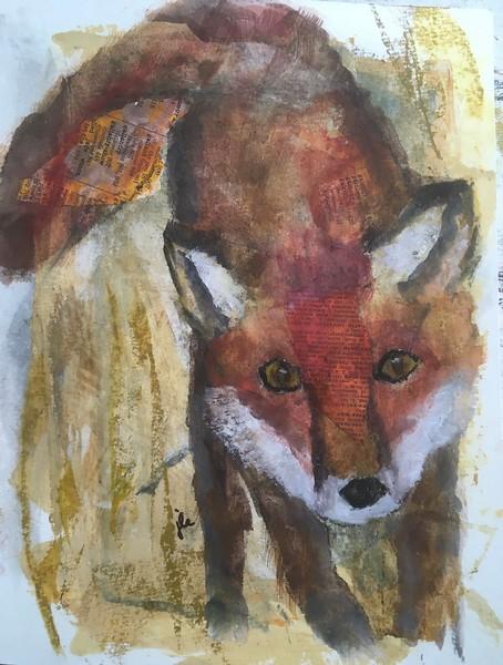 2/2/21 Little Red Fox
