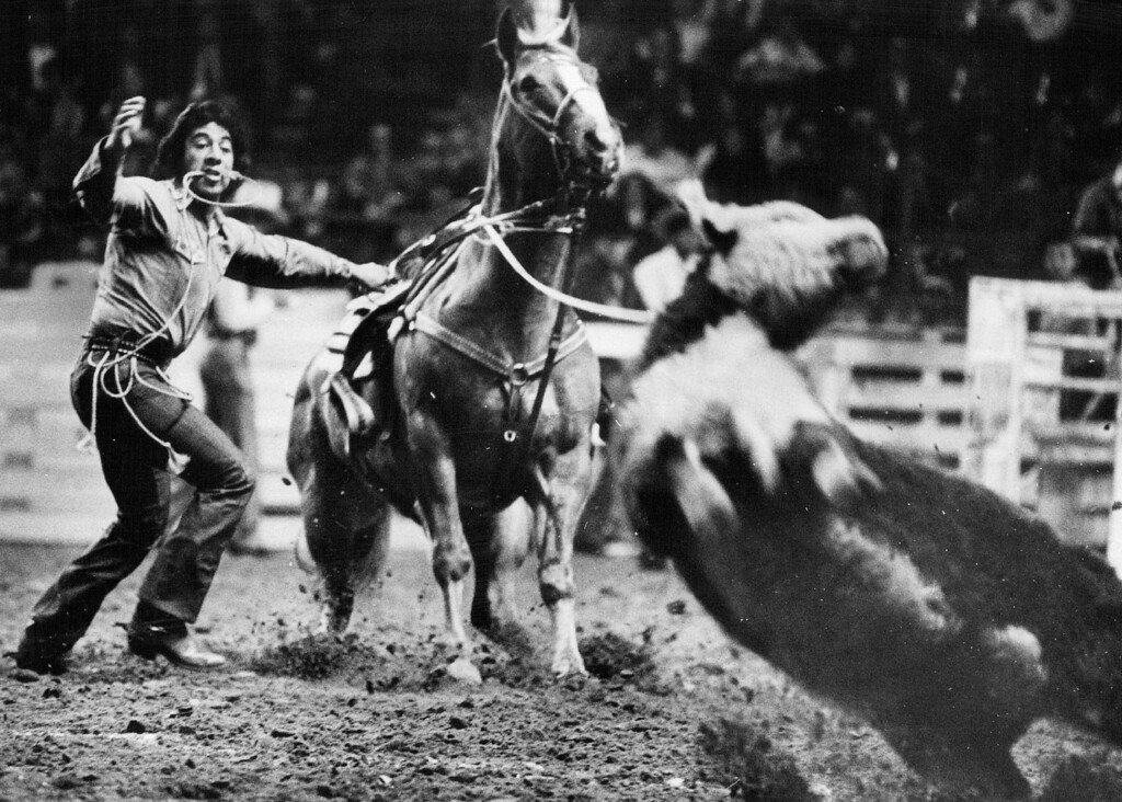 . National Western Stock Show Leo Camarillo In Calf Roping At The National Western. 1974. Ernie Leyba, The Denver Post