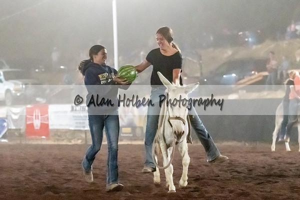 Donkey Watermelon Race (Friday)