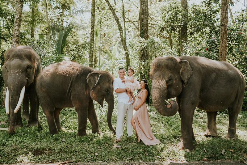 VTV_family_photoshoot_elephants_Bali_ (55).jpg