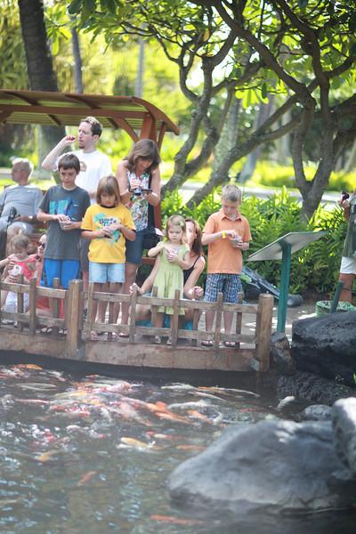 Kauai_D5_AM 123.jpg