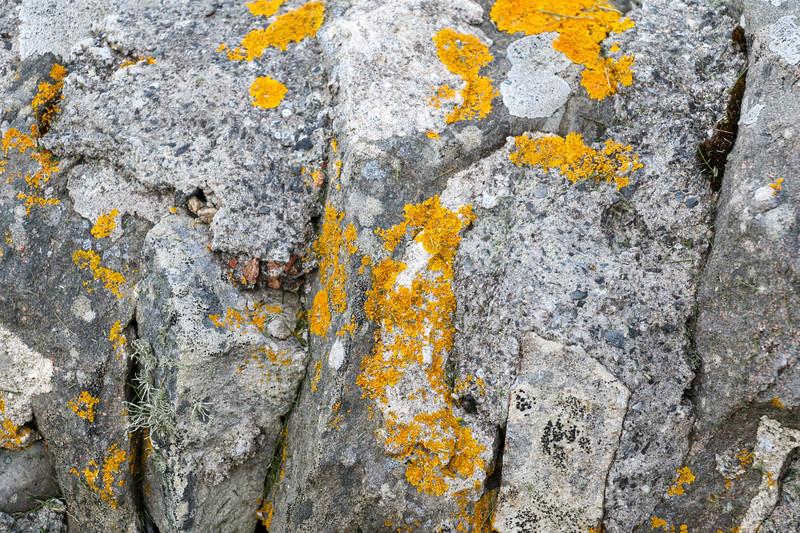 Discover Shetland Islands