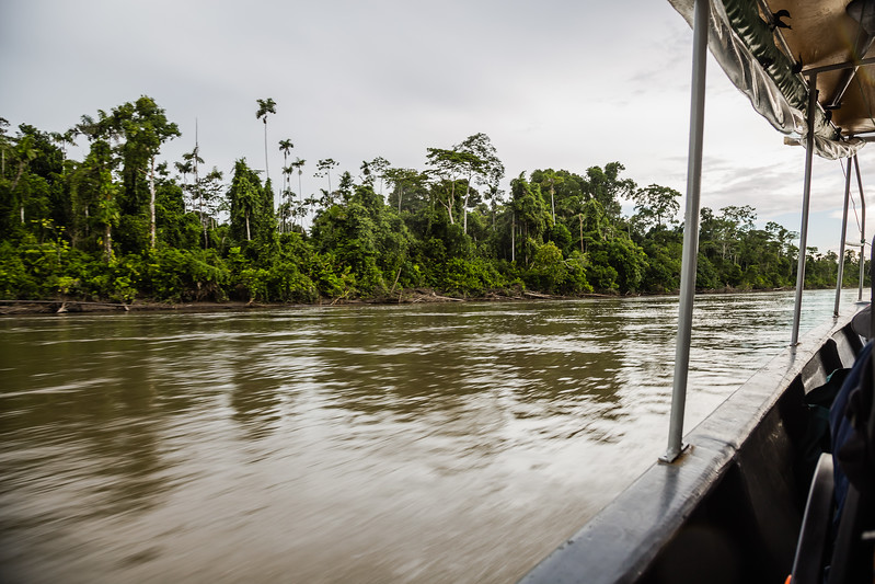 Napo Wildlife Center - Napo River - Lina Stock