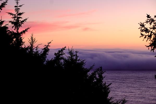 Coast Overnight Aug 2016